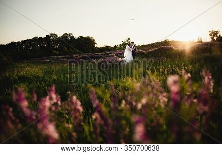 Newlyweds Are Standing In The Middle Of A Blooming Field At Sunset,the Groom Holds The Bride In His