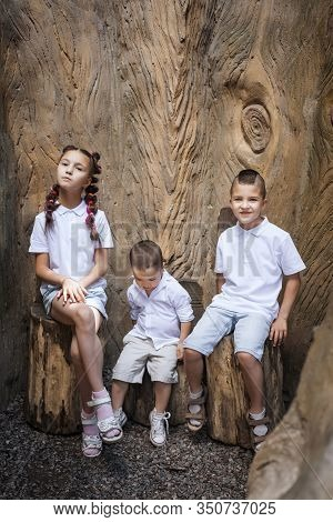 Three Emotional Cute Children Wearing White Shirts Sitting On The Stumps Near The Tree In The Park.