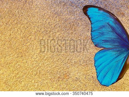 Golden Texture Background. Watercolor Paper Painted In Gold Paint. Watercolor Paper Texture. Bright