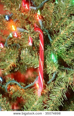 Candy Cane On Christmas Tree