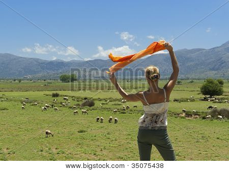 Attractive Woman Looking At Flock Of Sheeps On Green Meadow