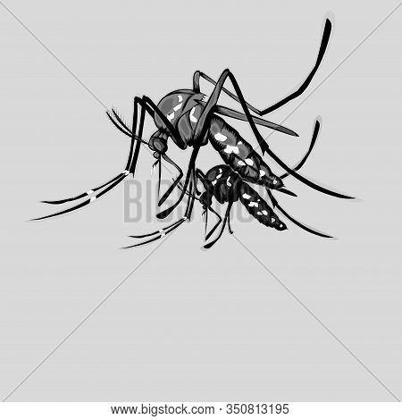 Simple Design Of Illustration Mosquito With Silhouette Mosquito