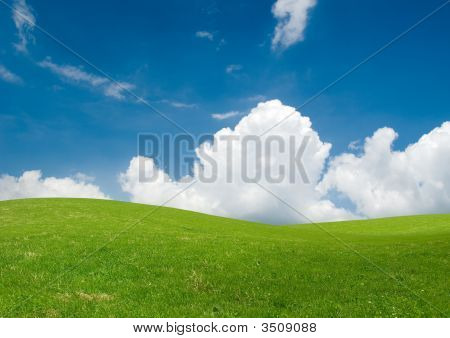 Fresh Summer Landscape