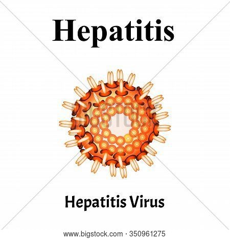 Hepatitis Virus Structure. Viral Infection Hepatitis. Sexually Transmitted Diseases. Infographics. V