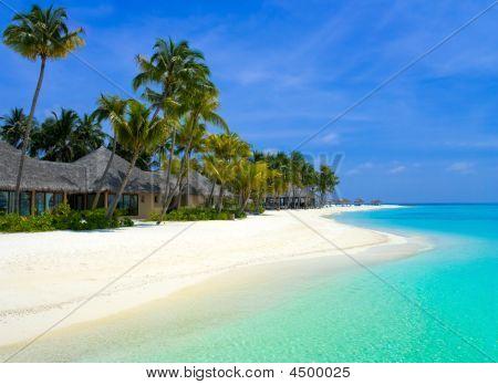 Beach Bungalows On A Tropical Island