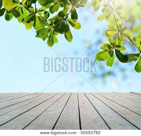empty table with leaves in background