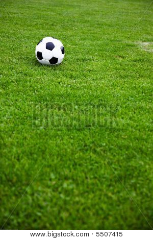 Soccer Ball On A Grassy Field