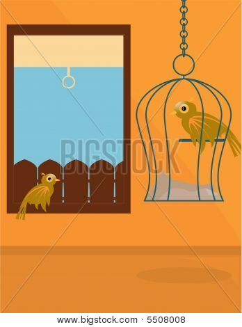 Indoor Bird Scene