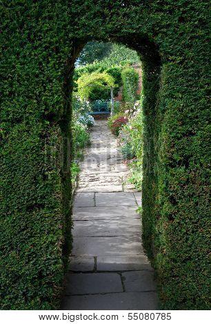 Yew Arch, English Garden