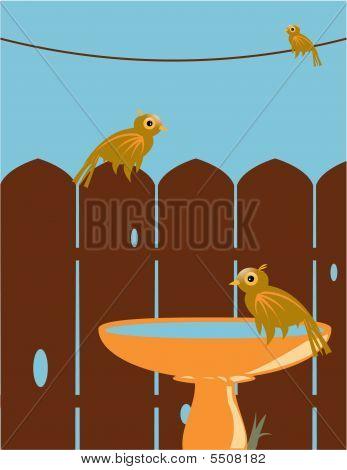 Outdoor Bird Scene