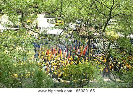 World Falun Dafa Day