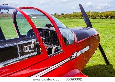 Pioneer 300 Hawk Detail