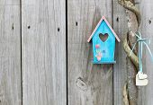 Teal blue and pink birdhouse hanging next to vine wrapped honey locust tree with wooden hearts poster