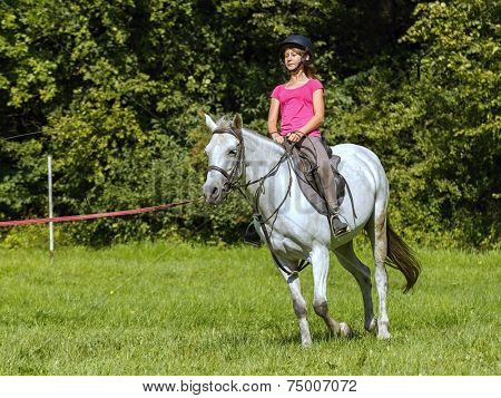 A young girl learns to ride a white horse