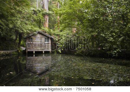 watershed vertical