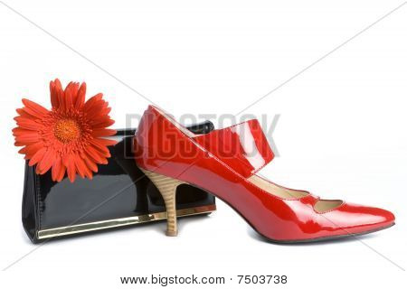 Shoes  And  Handbag And Flower