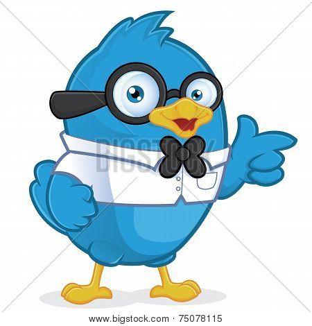 Blue Bird Geek