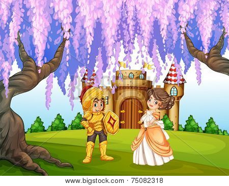 illustration of a knight and a princess