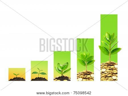business growth with csr
