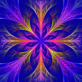 Beautiful multicolor fractal flower. Collection - frosty pattern. On darkblue. poster
