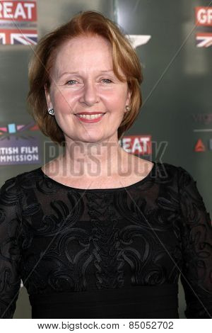 LOS ANGELES - FEB 20:  Kate Burton at the GREAT British Film Reception Honoring The British Nominees Of The 87th Annual Academy Awards at a London Hotel on February 20, 2015 in West Hollywood, CA