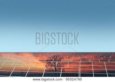 Solar Panel With Reflection