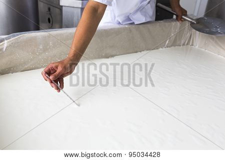 Cheese Production Creamery Dairy Worker Temperature
