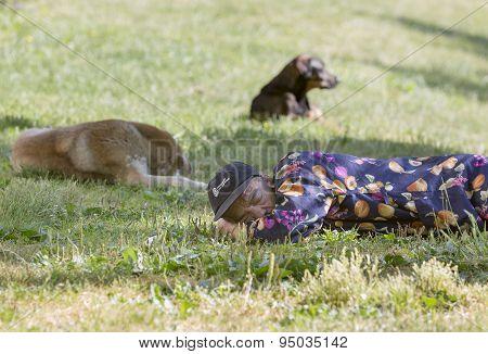 Homeless Man Sleeping Dogs