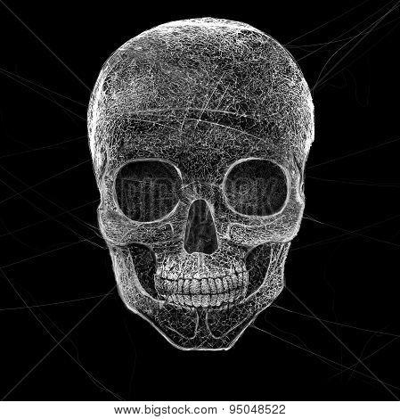 Horror Cobweb Skull