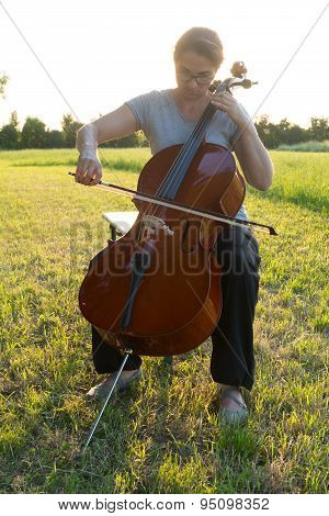 Playing The Cello On The Meadow