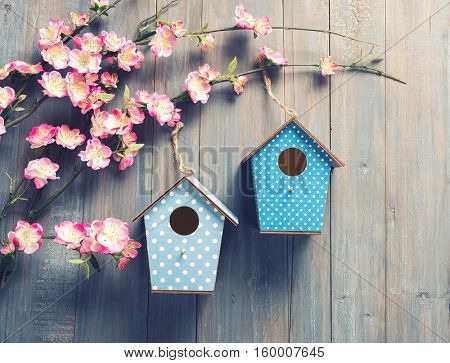 two birdhouses hang on spring tree flowers with antique rustic wood background.