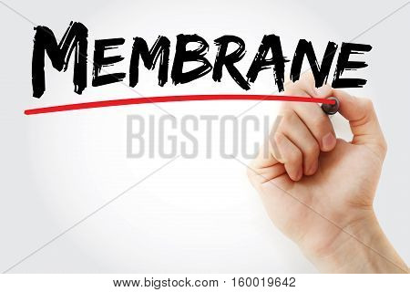 Hand Writing Membrane With Marker