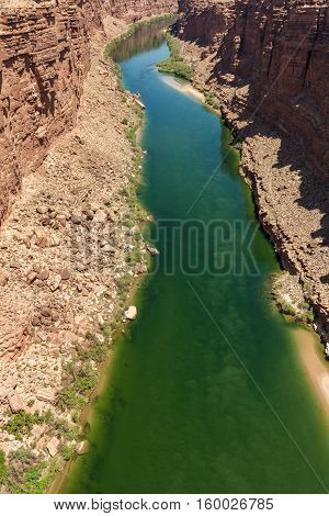 the Colorado River flowing through marble canyon in northern Arizona