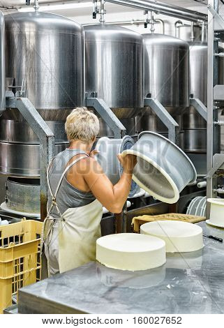 Cheese-maker putting young Gruyere de Comte Cheese into the forms at the dairy in Franche Comte Burgundy France.
