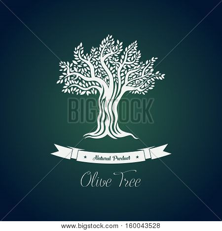 Leaf on branches of olive oil tree vector drawing. Greece olive tree for vegetarian or vegan food and drink, natural and organic fruit. For bottle label or sticker, olive oil packaging or tree grove