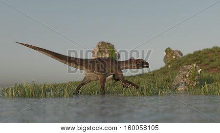 3d illustration of the walking utahraptor