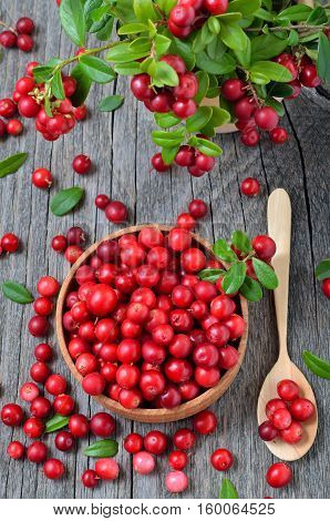 Red lingonberry in wooden bowl on rustic surface top view