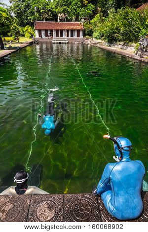 Free divers training in the swimming pool with green moss bottom