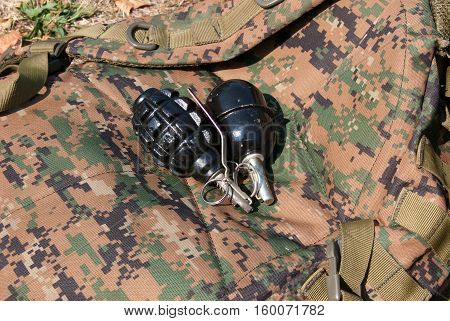 Man holding a hand grenade in his hand.