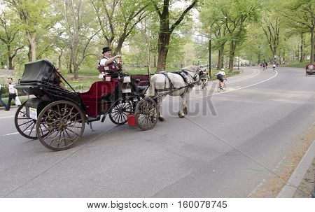 New York City USA - May 5 2015: visit to central park by horse-drawn carriage