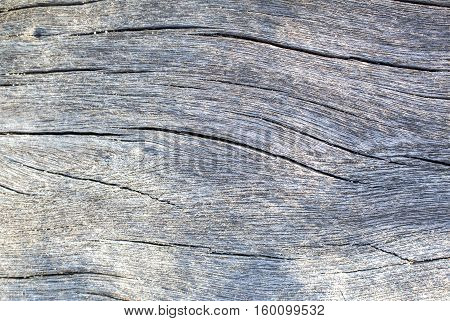 Distressed wood texture photo. Gray timber board with weathered crack lines. Natural background for shabby chic design. Weathered wooden board flat image.