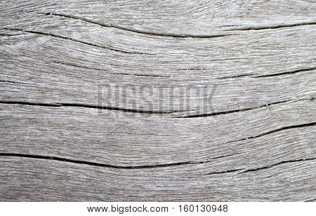 Wood texture closeup photo. White timber board with weathered crack lines. Natural background for shabby chic design. Grey wooden table image. Old tree trunk without bark. Sea wood vintage background