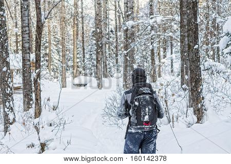 Man backpacker walking on a forest road in the winter forest in the mountains