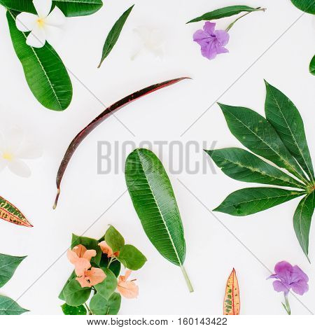 topical exotic colored leaf pattern on white background. flat lay top view