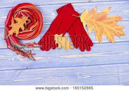 Autumnal Leaves, Woolen Gloves And Shawl For Woman, Clothing For Autumn Or Winter, Copy Space For Te