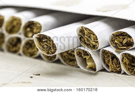 The open pack of cigarettes without filter closeup.