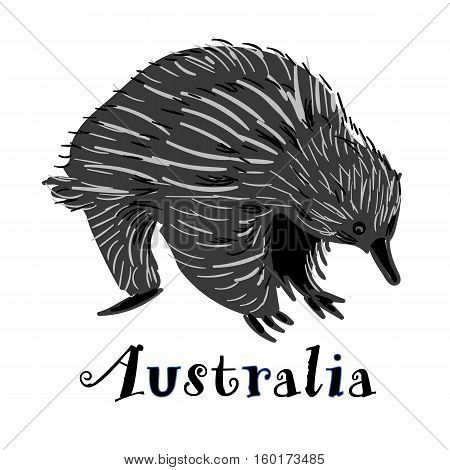 Handdrawn Echidna icon in doodle style with text. Logotype for business. Vector illustration.