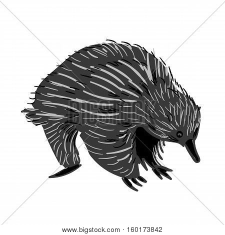 Vector illustration of handdrawn Australian animal Echidna in doodle style.