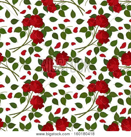 Seamless Floral Background for Holiday Design, Flowers Red Roses with Green Leafs Isolated on White Background. Vector
