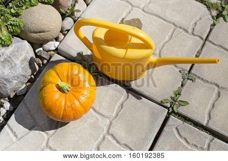 Big Pumpkin In An Autumn Country Fair